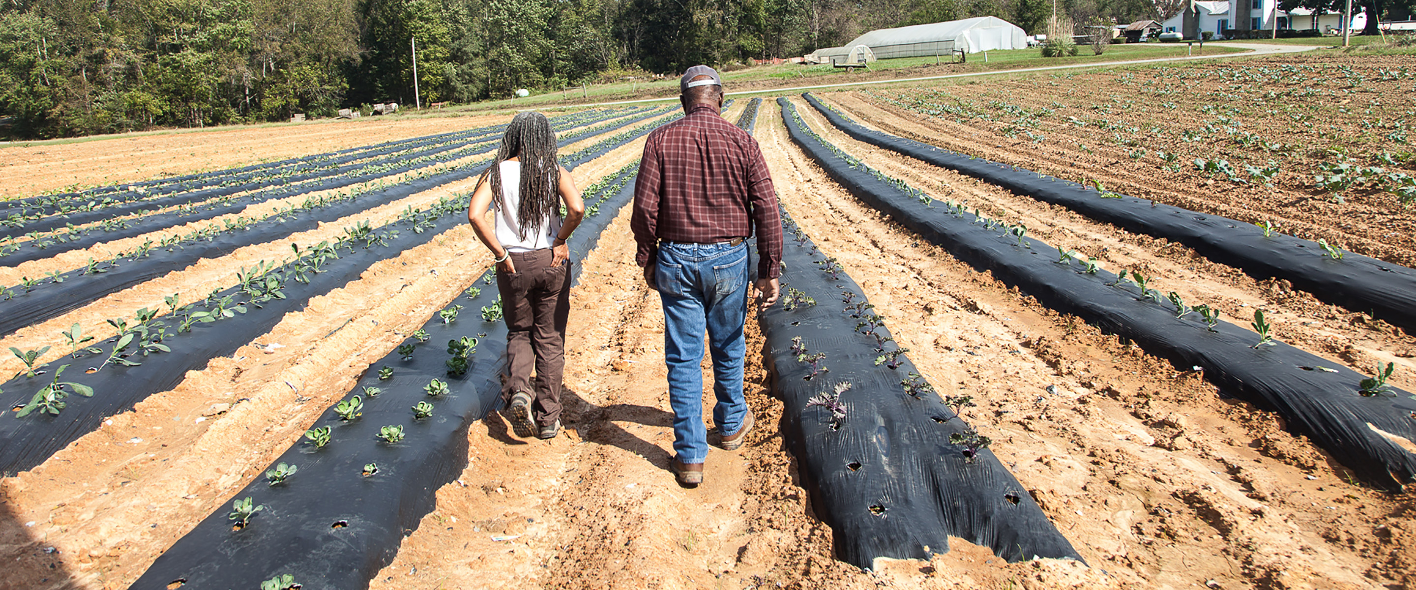 Pursuing Social Justice on the Farm with Savi Horne and the Land Loss Prevention Project
