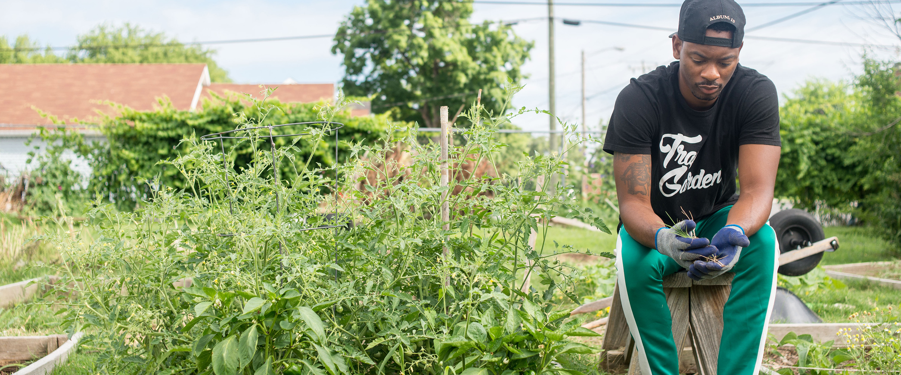 Hungry for Vegetables (and Change) in Nashville's Trap Garden