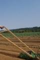 Eric Harvey / Farm Manager / Stargazer Farms