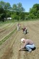 Lia Heitzman Babitch / Seed Garden Manager / Turtle Tree Seed