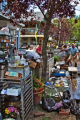 Good Food Jobs & The Green Cup: Contribute to the Irene Relief Effort