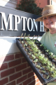Wendy Iles / Founder & President / Hampton Grows, Inc.